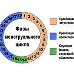 C30fc72b1af736ef353b0ae735177f30d7398718