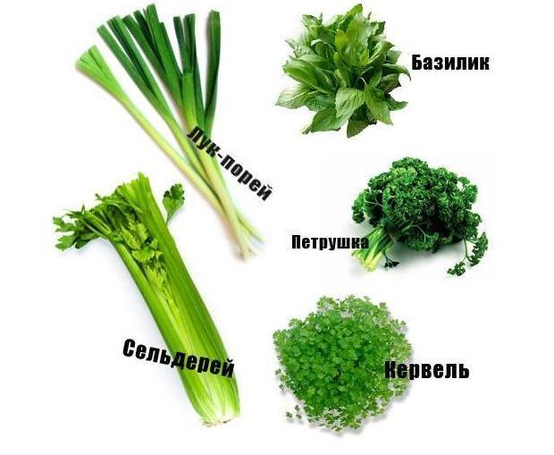 Самая полезная зелень для мужчин