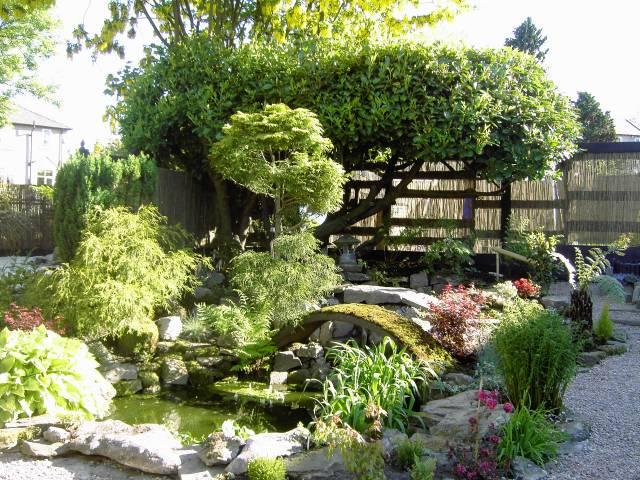Японский сад своими руками на Supersadovnikru