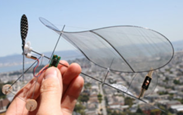 Как сделать самолет в домашних условиях на пульте управления