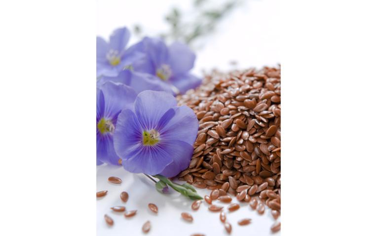 Как избавиться от папиллом льняным семенем