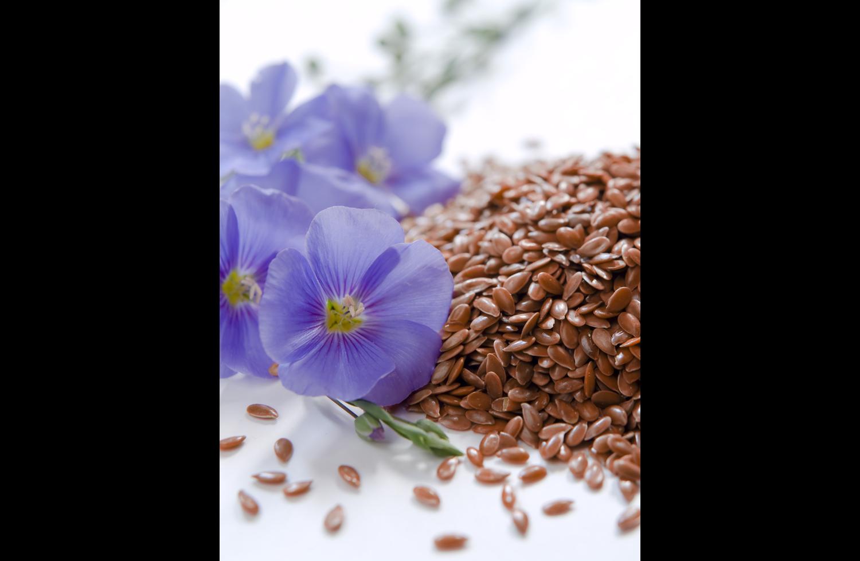 Лечение семенами льна: рецепты и способы применения