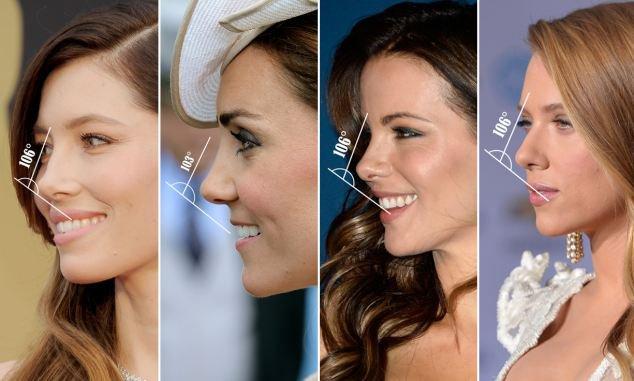 какие дамские носы числятся прекрасными фото