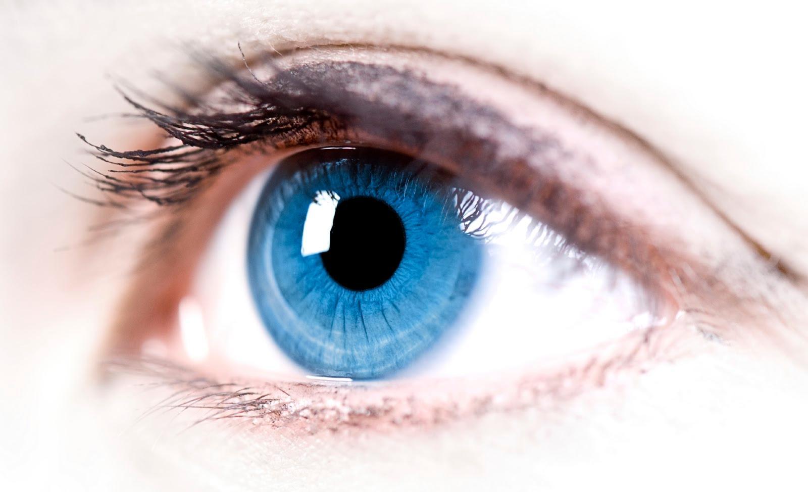 Витамины для глаз: капли, комплексы и народные средства для глаз | WMJ.ru