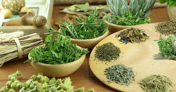 Травы снижающие аппетит эффективное средство для похудения